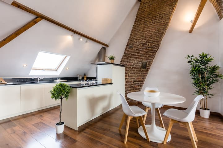 Large rooftop apartment w/ fireplace