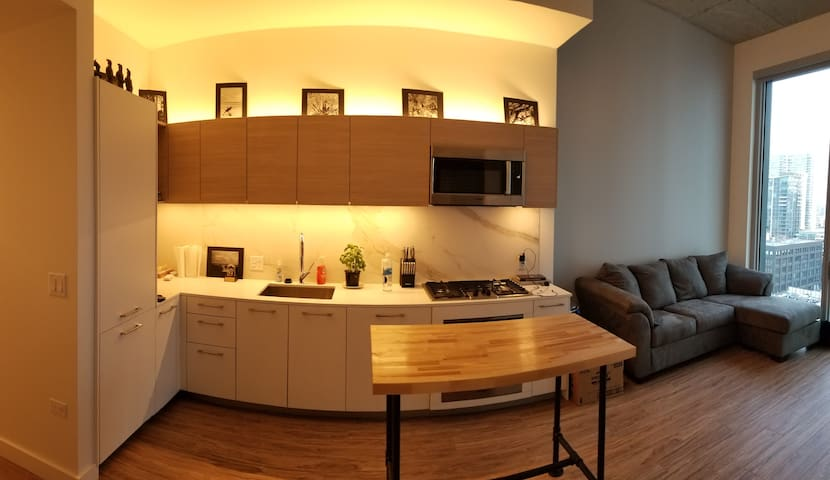 Luxury 1 Bedroom Penthouse Westloop Chicago