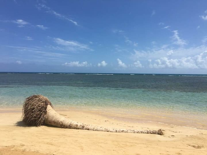 Family  Beachfront Apt at Punta Bandera Luquillo