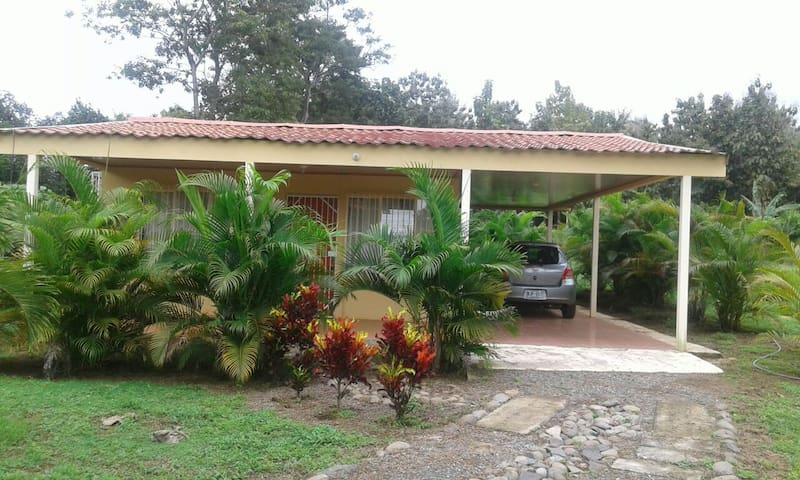 "1 Bedroom Cabin ""Casita"" with tropical Palms! - Jesús María - Kulübe"