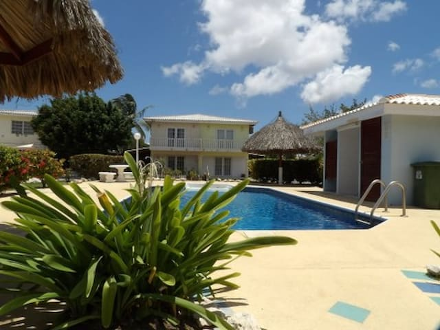 Great house with swimmingpool - Willemstad - House