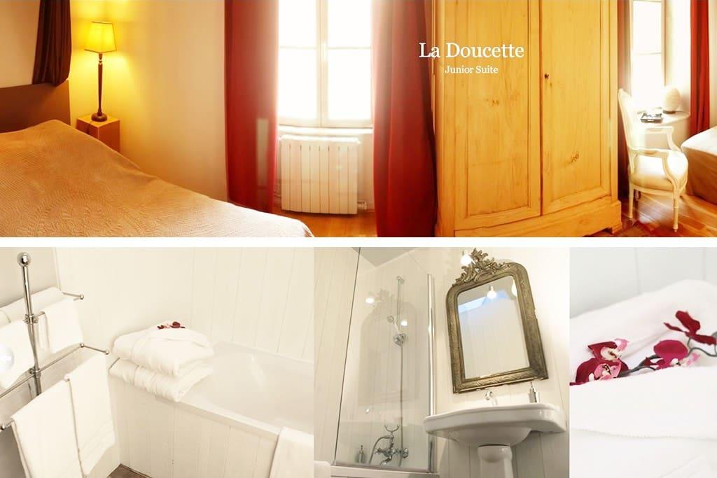 Chambre d'Hôtes La Rochelle - La Maison du Palmier