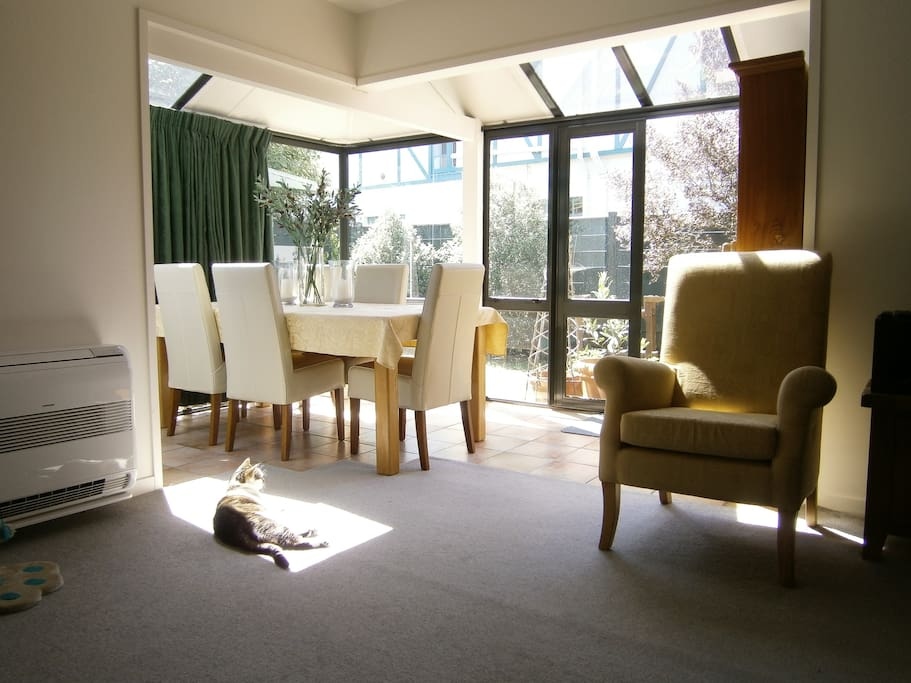 Dining area with Jack in the sun