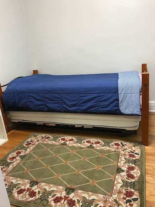 Thrundle bed and 1 extra mattress