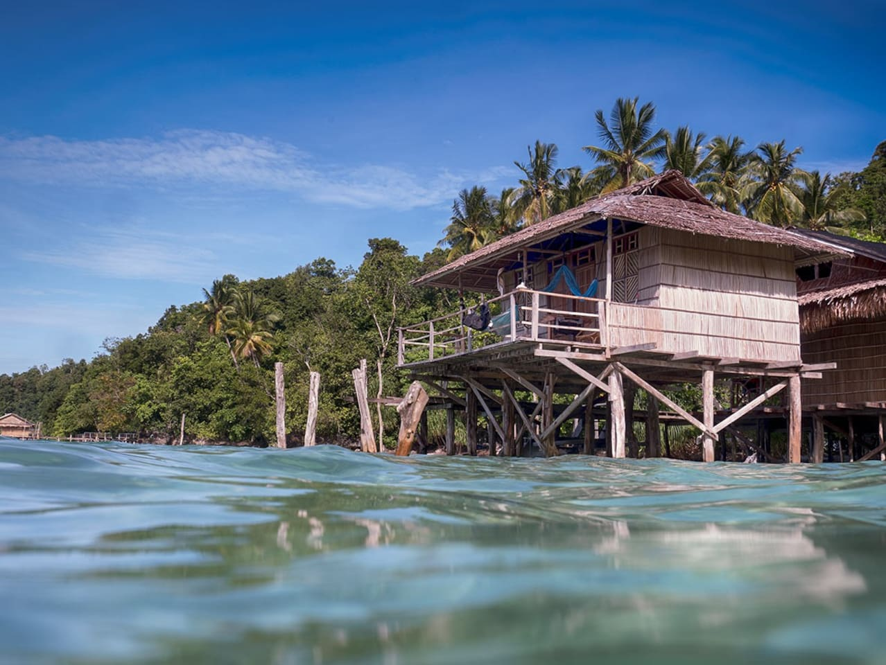 Tree house over the Coral Triangle