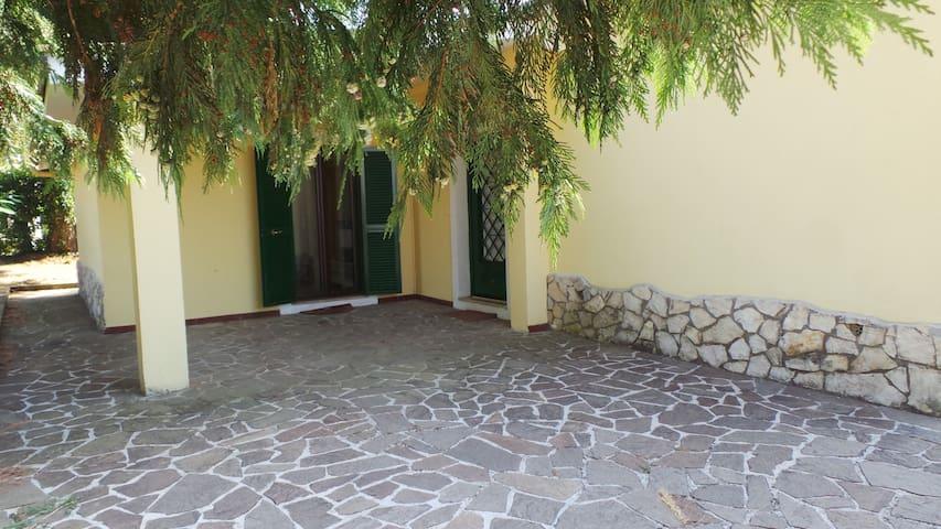 Villa dei Pini, Relax sui colli Romani - Zagarolo - Vila