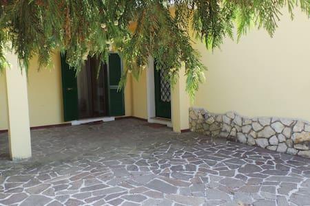 Villa dei Pini, Relax sui colli Romani - Zagarolo