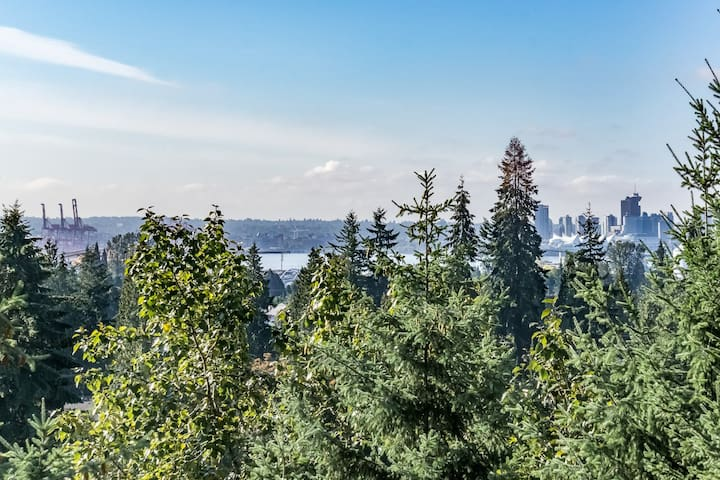 Great location in North Van, Newly Renovated - North Vancouver - Apartment