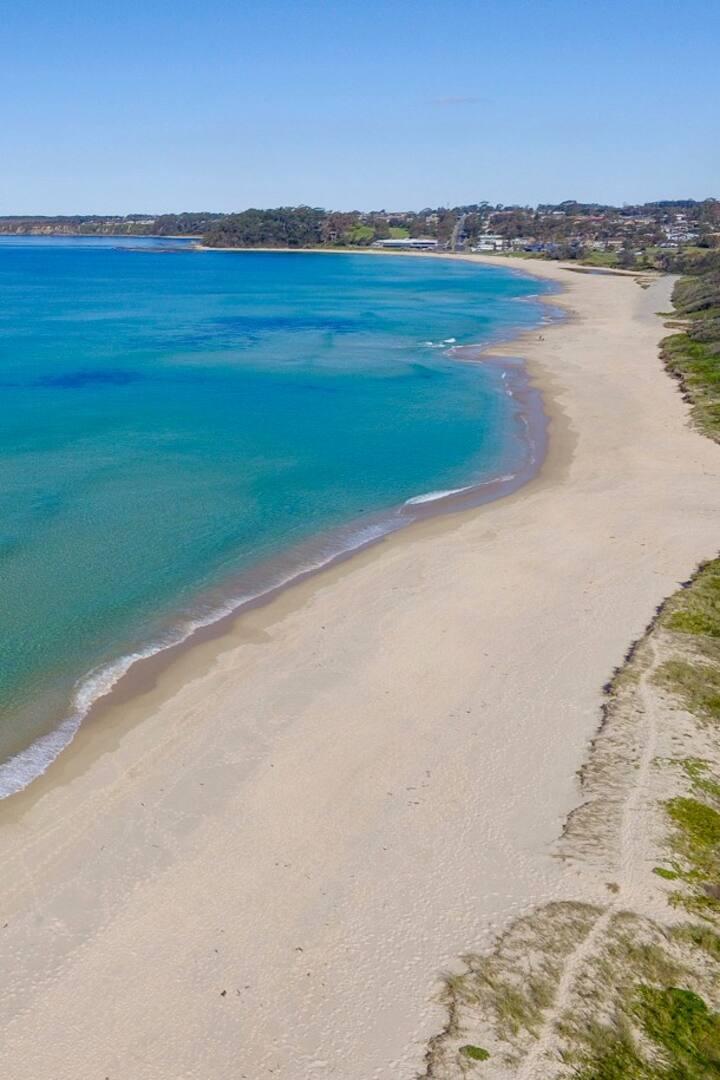 Perfect beach worm territory