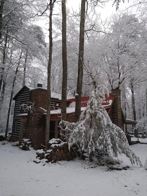 Treetops I Suite: Upstrs,RftopDeck,Ktchntte,Den