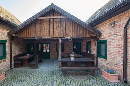 Holiday cottage with 8 bedrooms on 293m² in Zmajevac