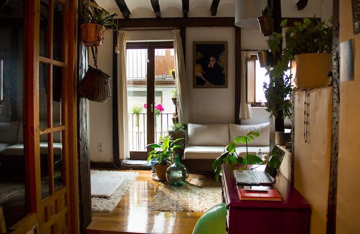 Acogedor apartamento en el centro, Castro-Urdiales