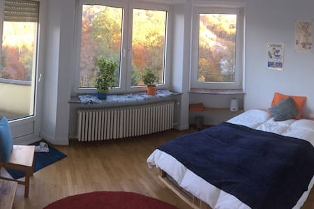 Colorful comfortable flat close to city center - Luxembourg