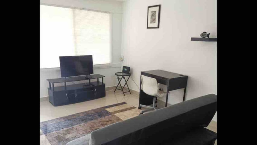 Brand new loft in Downtown Tijuana with parking.
