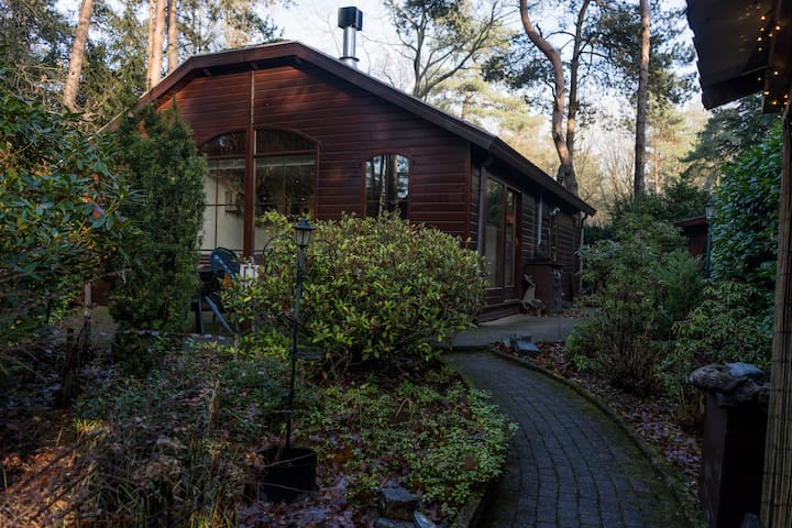 Wooden Chalet in the Forest!  - Your cozy home :)
