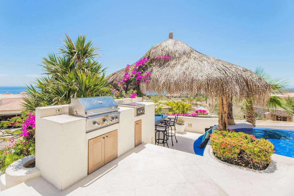 Gas Barbecue and Wet Bar