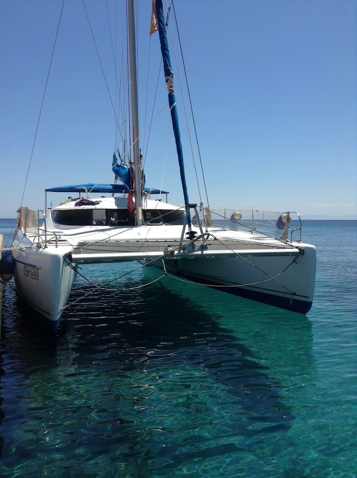 Noleggio Catamarano in Sardegna con Skipper