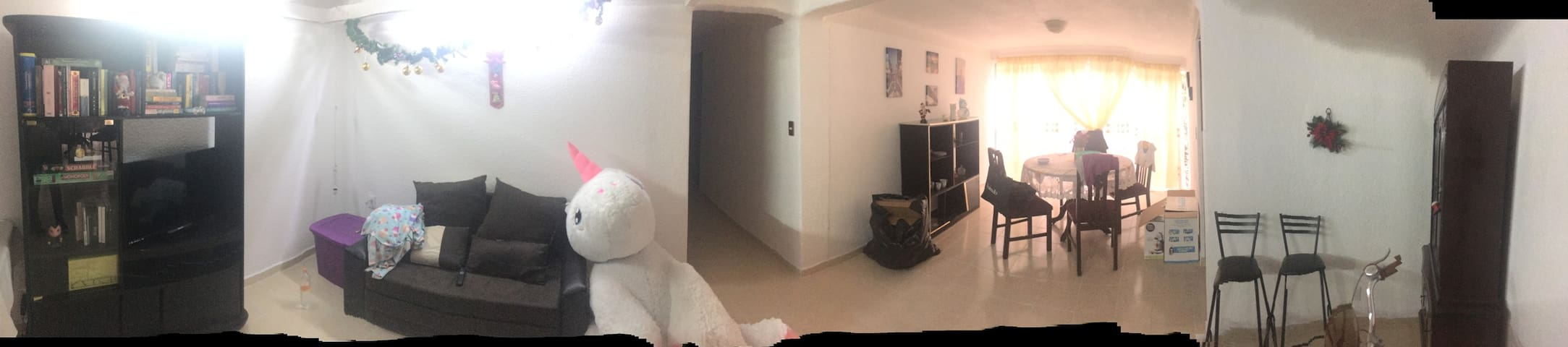 Shared apartment near UNAM