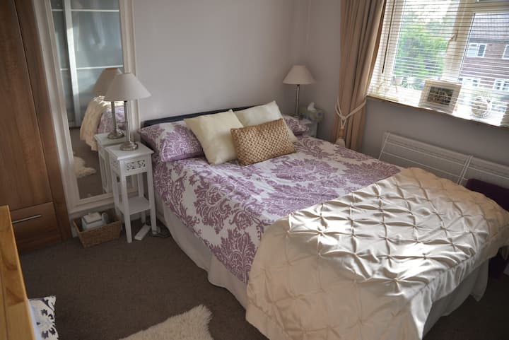 Great Family House in SW London