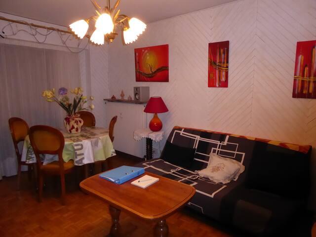 Appartement F3 - 4 personnes - au pied du chateau