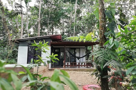 Reserva Natural Paway Putumayo.Cabaña en el bosque