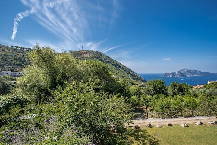 Villa Elysium - Private pool with Capri sea view