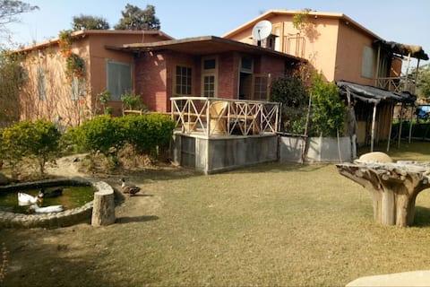 Carpet Sahib- The Hangout (Village Hut 2 )