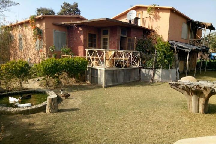 Carpet Sahib- The Hangout  (Village Hut 1)