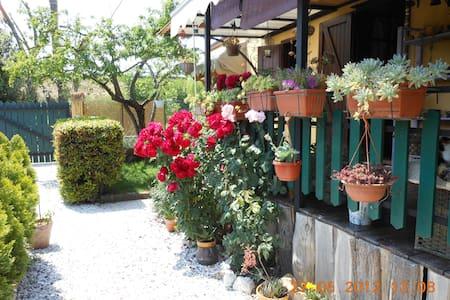 Casa Tima - Capezzano Pianore - Casa