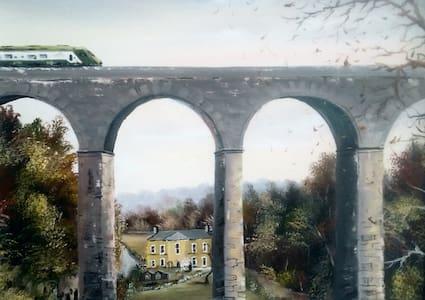 Single bed in Georgian home- 5 mins City/Blarney. - Cork