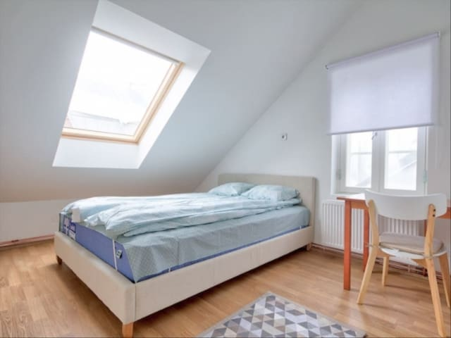 Haarlem Perfect room for travelers