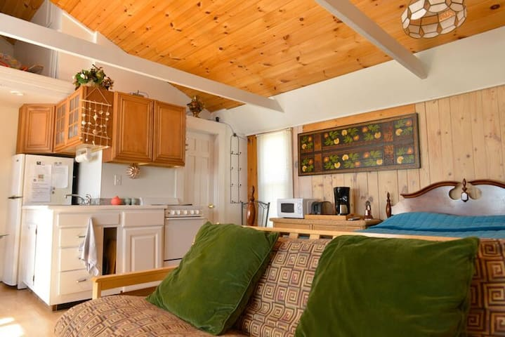 Beachfront Studio Cottage in West Harwich Cape Cod - Harwich - Apartment