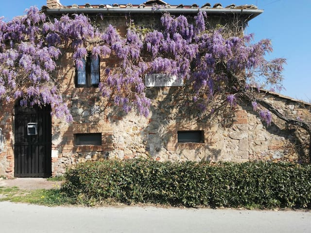 Holiday house in the countryside near Siena - sovicille orgia - Dom