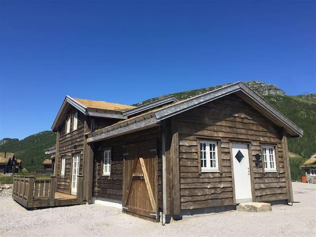 Romslig hytte på Hovdenut