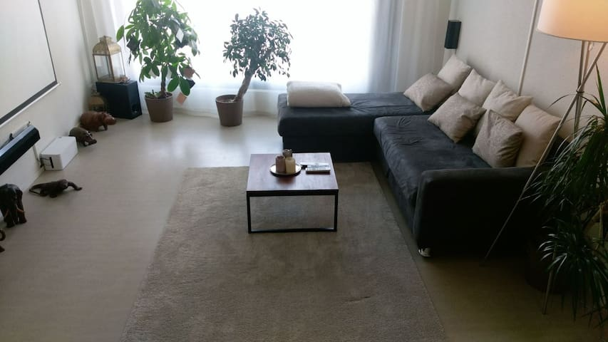 Brand-new apartment 12 min to Zurich 3-4 persons - Schlieren - Daire