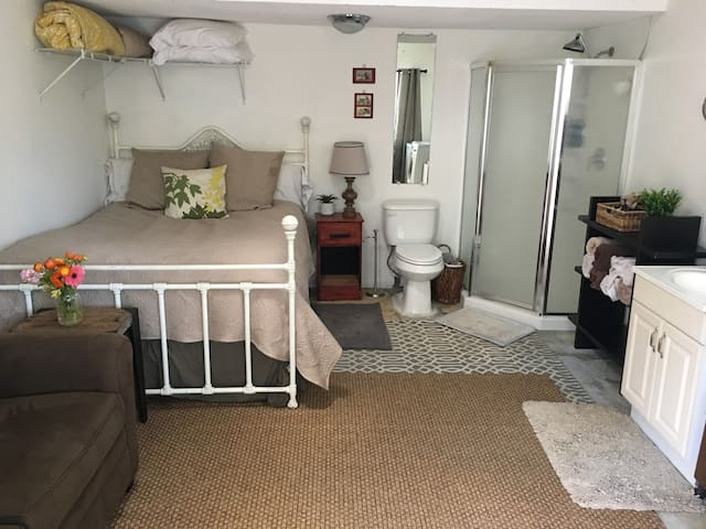 Our guest house has an open floor plan with a queen bed and a stand up shower.