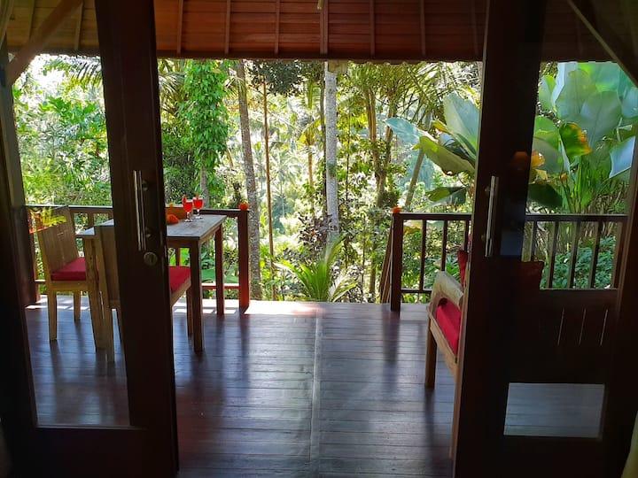 Secluded Jungle Villa #2