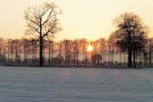 Zonsondergang met een sneeuwlandschap