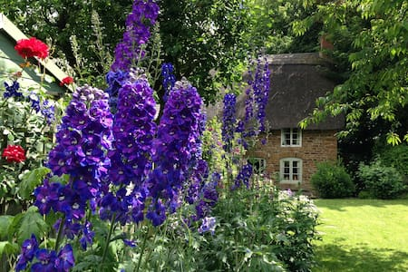 Cosy Cotswold Cottage, sleeps 4 - Hus