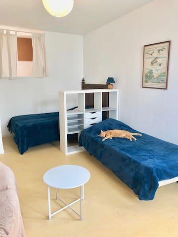 Dans la chambre de 17,50M2 , un lit double et un lit simple