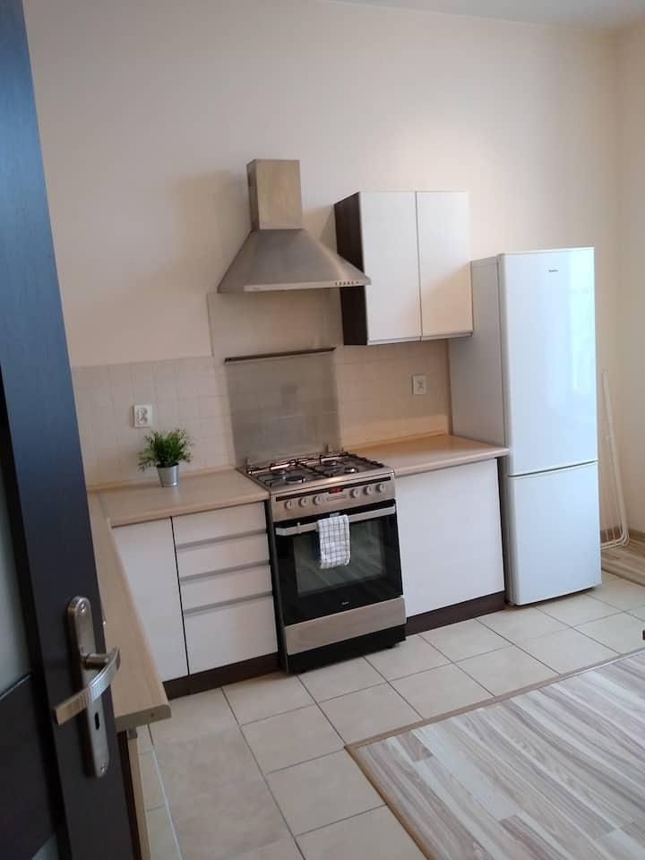 Spacious 2-room apartment near Piotrkowska Street