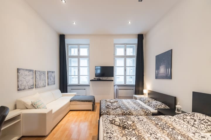 Apartment at Wenceslas Square