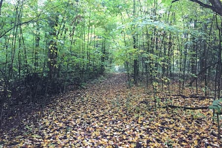 Forest Therapy by Lake Ontario - Bath - Tenda