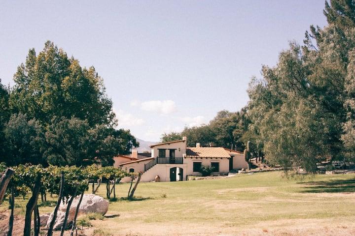 Casa El Molino – vineyard on the Salta wine route