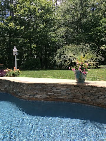secluded charming home in wooded area with pool