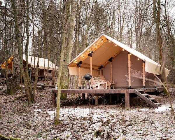 Эко-домик (шатер) в лесу на берегу озера