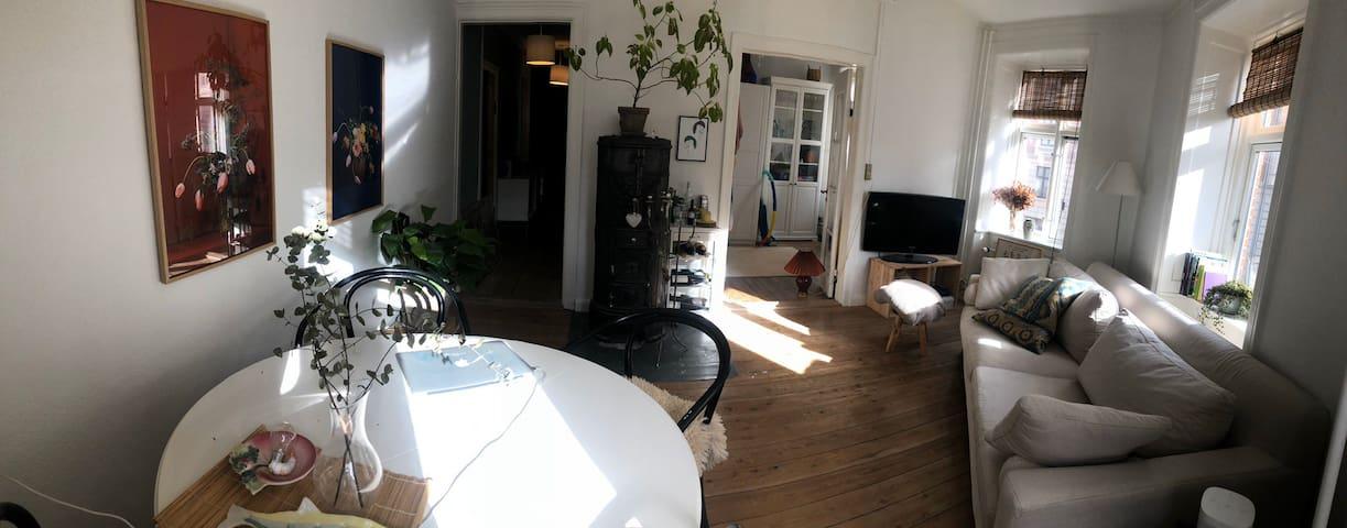 Central Copenhagen apartment