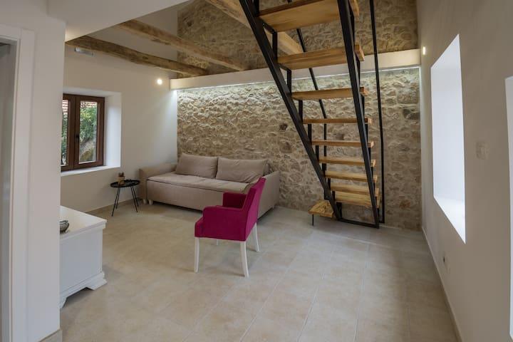 Stara kuca Estate- Old house with pool Anica