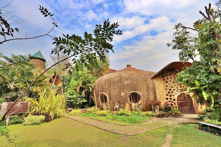 Leafy Greens Chiangmai : Snail Dome (SND)