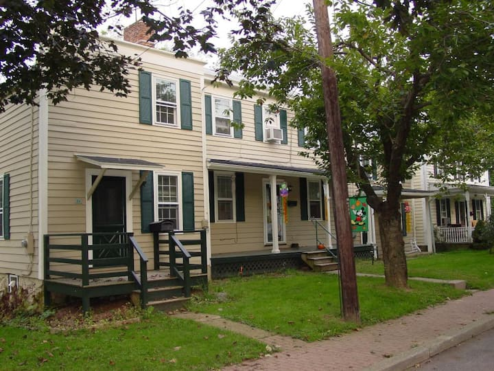Mulligan House - Historic Home Clinton Pets & Kids